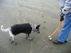 Gretchen in her sporty new coat.