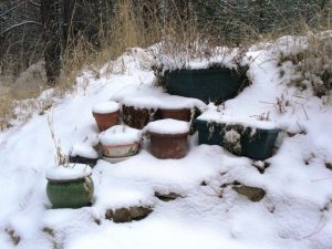 Our flower pots are still waiting for Spring.