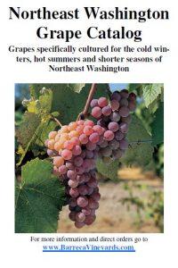 Barreca Vineyards Grape Catalog for 2014
